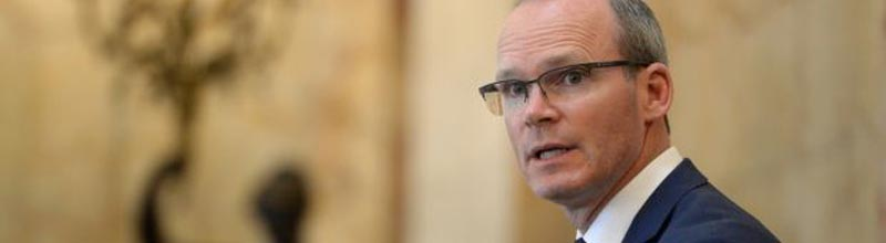 Simon Coveney and Susan Walsh featured in Irish Times